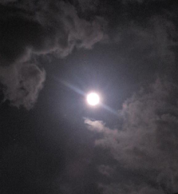 仲秋の名月 (4)