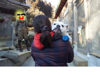 snap_kiki321_20122016846.jpg