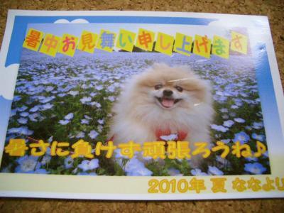 201007239442.jpg