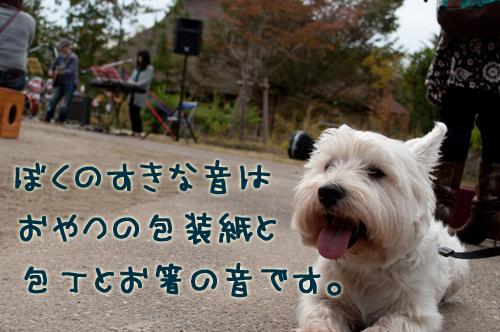 10_20101102003622.jpg