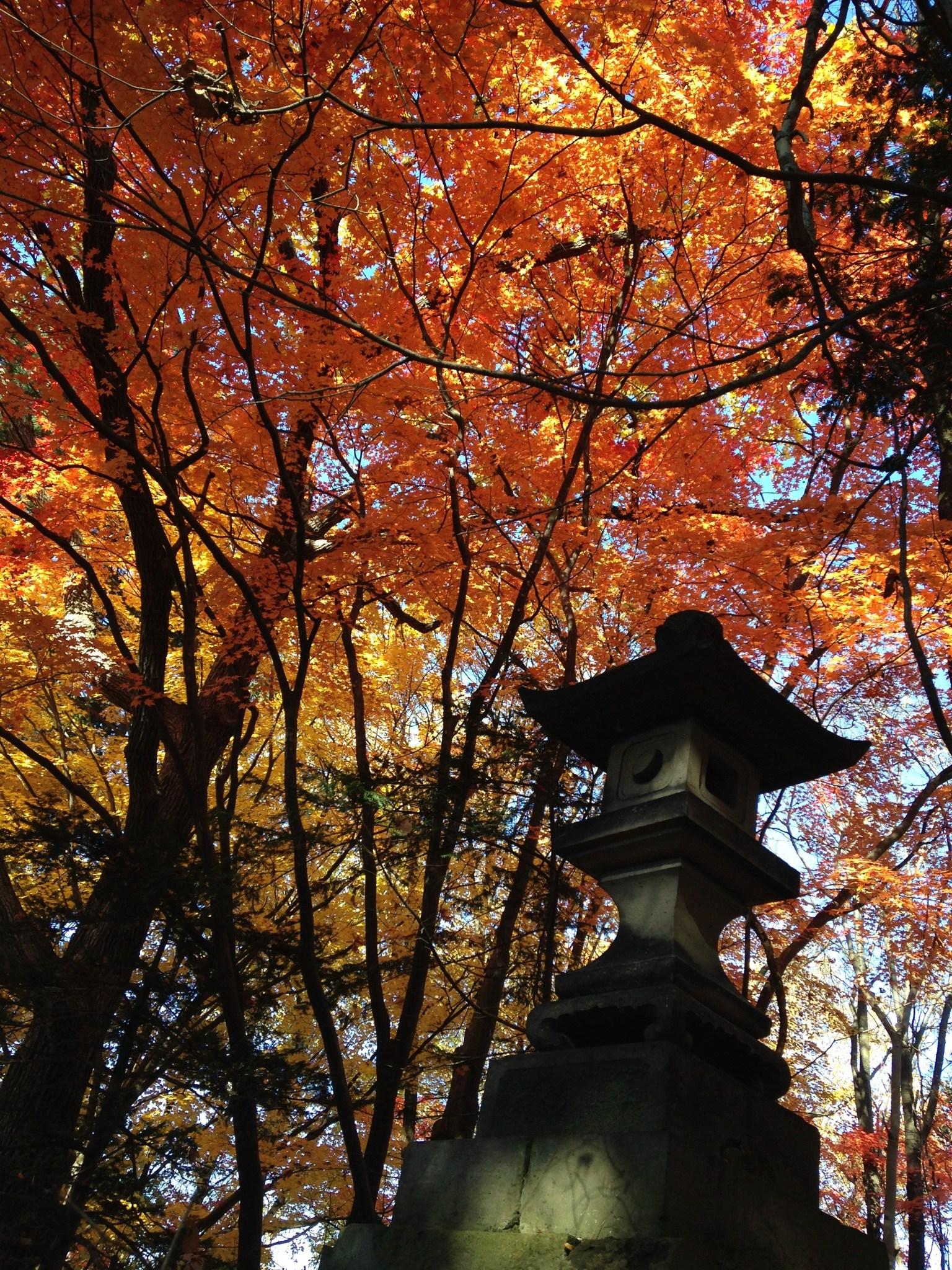 H26.10 灯籠と紅葉