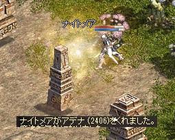 16_20101128215726.jpg