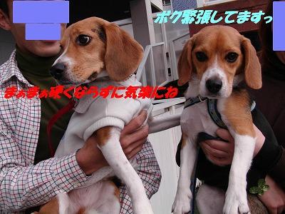 くらのすけ_sh02