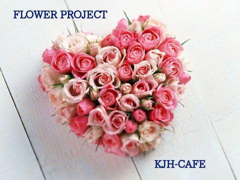 FLOWER PROJECT-韓Fun