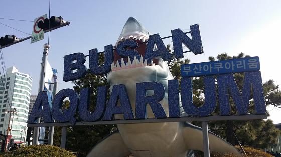 BUSAN-hana03.png