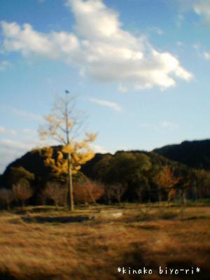 sky3_convert_20111124161322.jpg