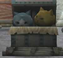 金ネコと銀ネコ?