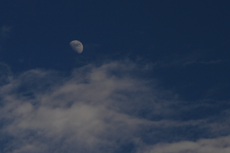東の空_0175