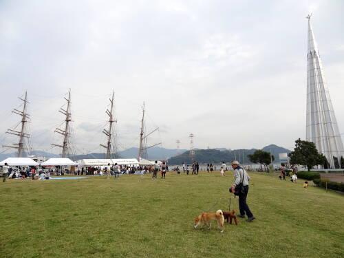 7帆船フェスタ