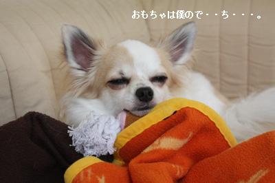 IMG_1120・2 コピー