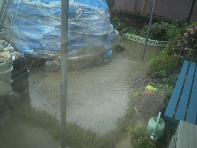 大雨 (1)