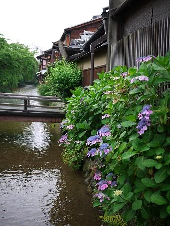 04祇園白川05