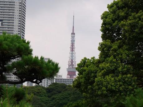 12浜離宮12東京タワー