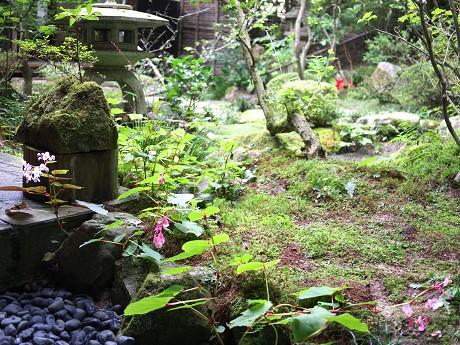 45宝泉院-鶴亀04