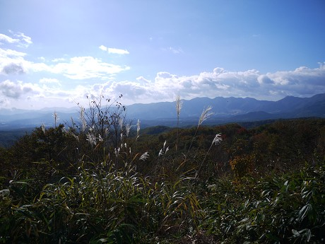 08蒜山04ススキ