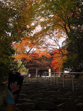 11神護寺参道06