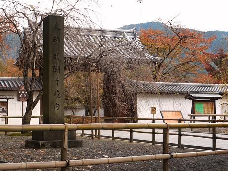 醍醐寺01