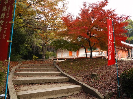 醍醐寺07