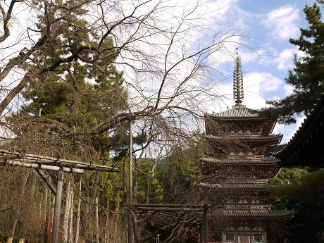 醍醐寺09