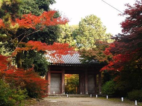 醍醐寺11