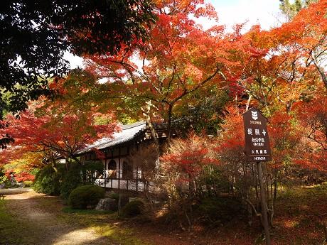 醍醐寺11伝法学院