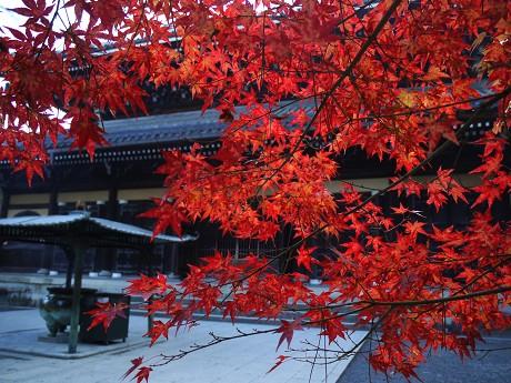 10南禅寺11