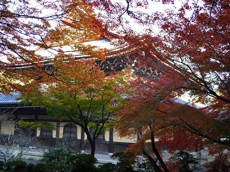 14南禅寺15