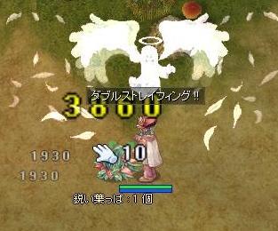 101020鳥レベルUP