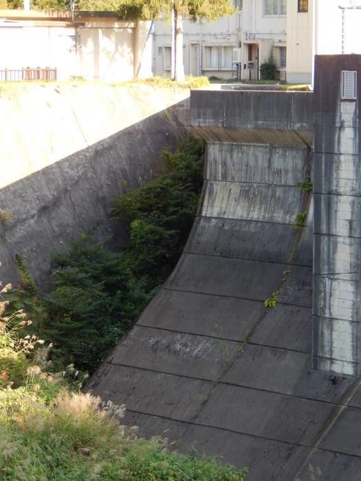 DSCN6814鯖石川ダム
