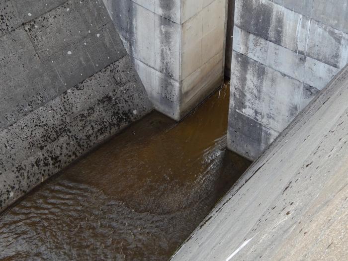 DSCN6974柿崎川ダム