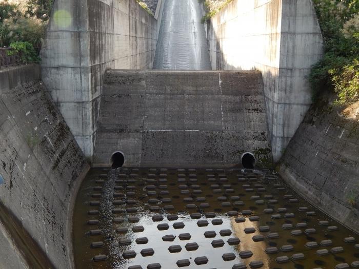 DSCN7002柿崎川ダム
