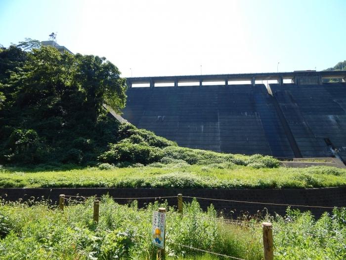 DSCN7096正善寺ダム