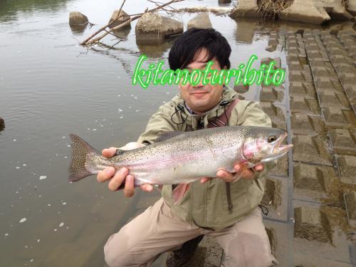 IMG_0338-001_convert_20120712010913.jpg