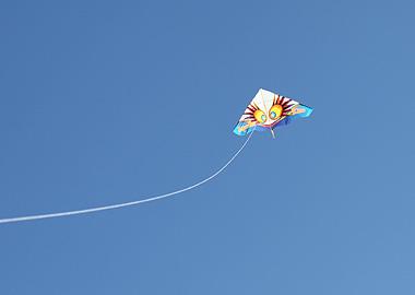 s6382.jpg