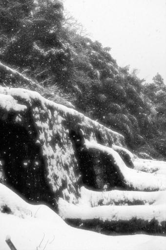 清水谷製錬所跡の石垣