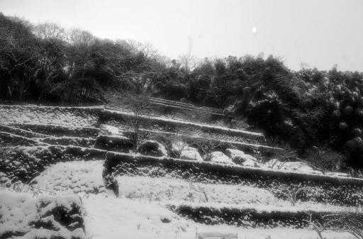 清水谷製錬所跡冬景色