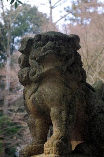城上神社の狛犬