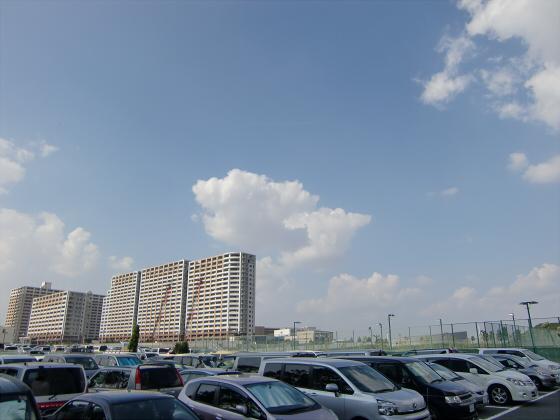 WTC・インテックス大阪など11