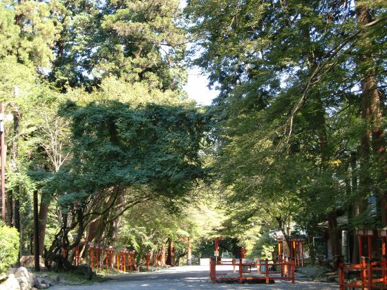 坂本駅周辺⇒日吉神社09