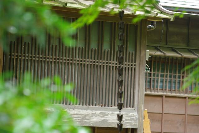 100620花菖蒲鑑賞会05