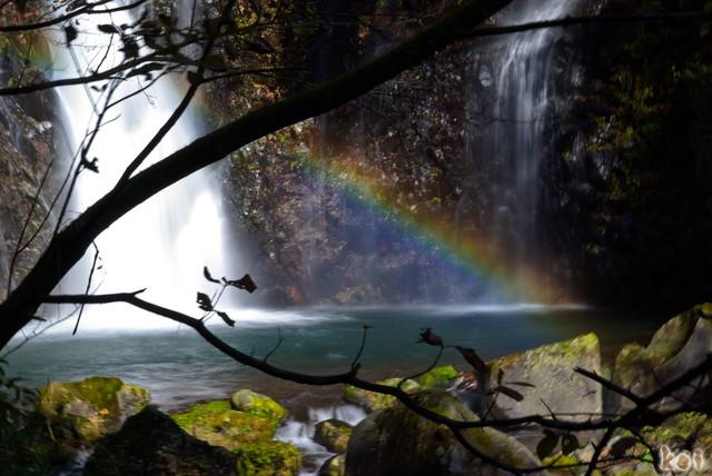 101106裏見の滝10