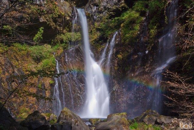 101106裏見の滝09
