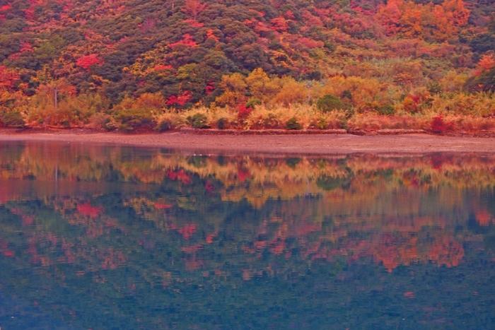 朝の湾紅葉が映って