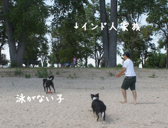 gogo_5.jpg