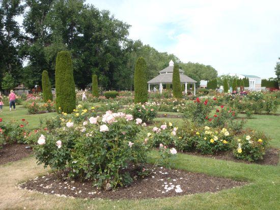 rosegarden_4.jpg