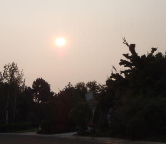 smog_1.jpg