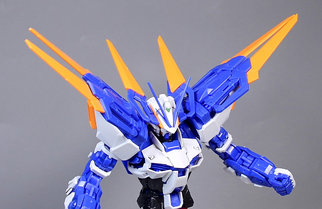 MG-BLUE_FRAME-D-65.jpg