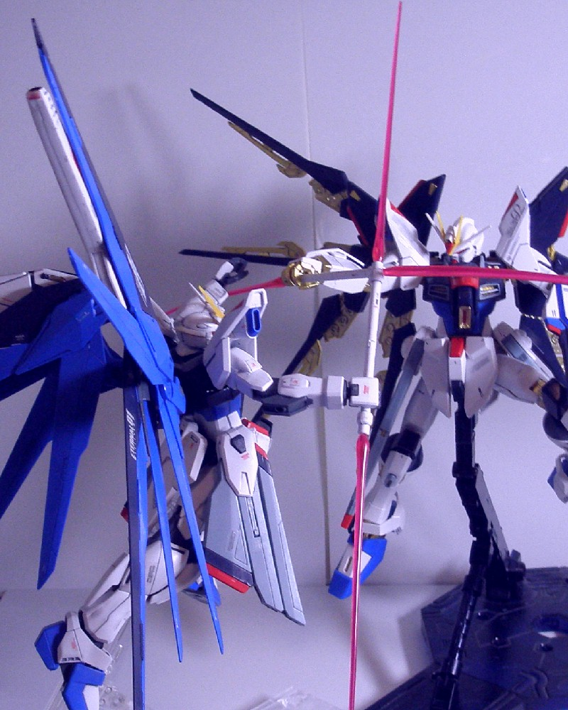 MG-FREEDOMGUNDAM20.jpg