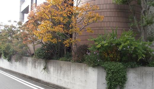 鉄道模型・展示&運転会@世良美術館-2