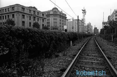 kaiganrinL.jpg